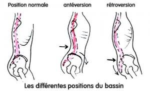 positions-bassin
